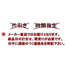 LIXIL サンウェーブ レンジフード 間口60cm シロッコファンタイプ NBH-6387|aquashop07|02