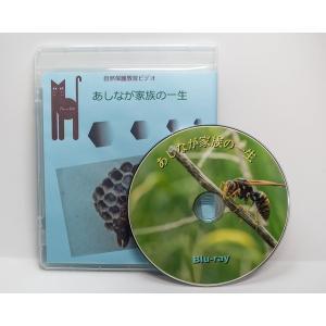 あしなが家族の一生  60分DVD版|aquashopp21