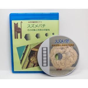 スズメバチその対策と共存の可能性 50分DVD版|aquashopp21