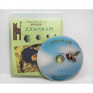 スズメバチ入門 60分DVD版|aquashopp21