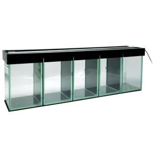 LEDライト付ベタ水槽 5部屋|aquatailors