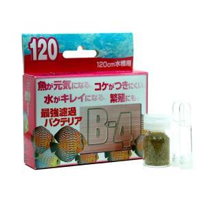 パピエC ろ過バクテリア B−4 120cm水槽用|aquatailors