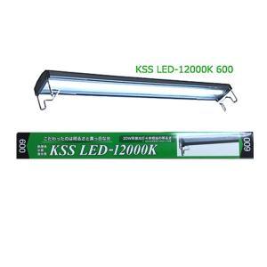 KSS LED-12000K 600|aquatailors