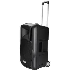 【送料無料】DJテック 80Wで充電式のポータブル スピーカー 音響機器! Bluetoothにも対応! DJ-Tech  FPX-G12BTE ポータブル PAシステム 簡単で便利! arabastamusic