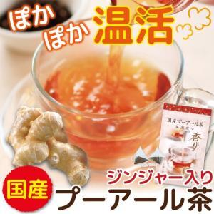プーアル茶 ジンジャー 国産 プーアール茶 茶流痩々 ティーバッグ 低カフェイン ジンジャー 2gx10ヶ|arahata