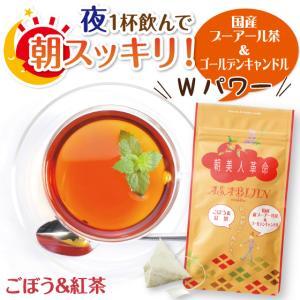 健康茶 お茶 ハーブティー 朝美人革命 ごぼう&紅茶 2g×7ヶ入|arahata
