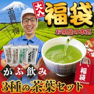 お茶 緑茶 静岡茶 福袋 カテキン 詰め合せ がぶ飲み大入り茶葉セット 送料無料|arahata