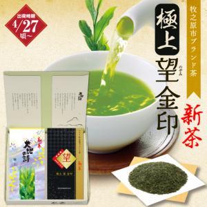 新茶 お茶 2021 緑茶 静岡茶 カテキン ギフト 極上・極上望金印2袋箱入 4/27頃より出荷予...