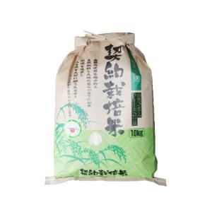白米『群馬県産コシヒカリ』10kg...