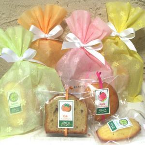 パステルバッグ和歌山産フルーツを焼き込んだ焼き菓子プチギフト プレゼント・お祝い・お礼に arancia-mm