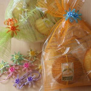 「クリスタルフラワーバッグ」〜和歌山産フルーツを焼き込んだ焼き菓子5個入りプチギフト arancia-mm