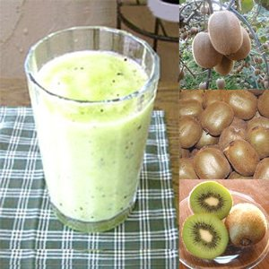 【冷凍便】和歌山産「キウイフルーツスムージー」農家さんから直接分けてもらうくだもの(キウイフルーツ+レモン+みかんの花の蜂蜜) arancia-mm