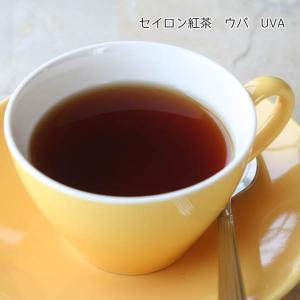 セイロン紅茶「ウバ BOP Peak Quality」(ハイランズ茶園)50gアルミパック入り■スリランカ(セイロン)ティーオークションで厳選・直輸入の新鮮茶葉 arancia-mm