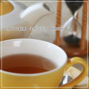 セイロン紅茶「キャンディ BOP Special」(ドォテルオヤ茶園)50gアルミパック入り■スリランカ(セイロン)ティーオークションで厳選・直輸入の新鮮茶葉 arancia-mm