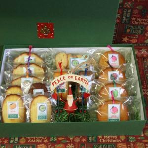 箱入りクリスマス贈答ギフト〜サンタのブリキオーナメントと和歌山産フルーツを焼き込んだ焼き菓子クリスマスギフトセット(包装済み) arancia-mm