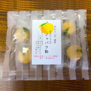 「ジャバラ飴」和歌山産柑橘フルーツ紀州かつらぎ山の「じゃばら」の果汁と果皮粉末入り手作り有平糖(堺あるへい堂謹製)〜花粉の季節に【ネコポス可】|arancia-mm
