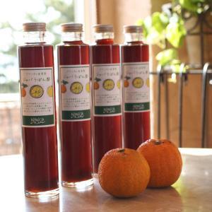 アランチャ自家製「ジャバラぽん酢」230g 和歌山産柑橘フルーツ「じゃばら」を使った本格だしポン酢