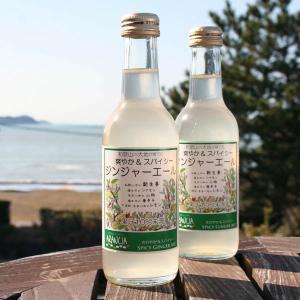 和歌山の大地が育てた「ジンジャーエール」1本 新生姜・シナモン・唐辛子・山椒でスパイシー&レモンで爽やかな大人のスパークリングジュース・ご当地サイダー|arancia-mm