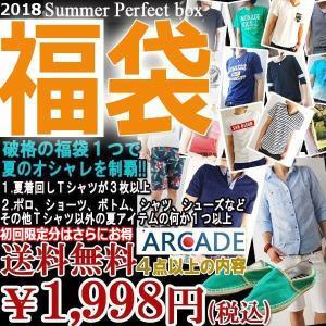 2018年お得すぎる夏の勝負福袋/ARCADE/数量限定/期間限定/合計4点以上の充実内容 メンズ Tシャツ メンズ 夏服