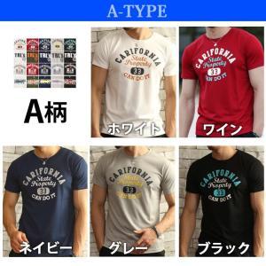Tシャツ メンズ 吸汗速乾 半袖T ドライメッシュ素材 アメカジ Tシャツ カレッジ トップス メンズ|arcade|05
