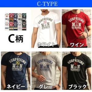 Tシャツ メンズ 吸汗速乾 半袖T ドライメッシュ素材 アメカジ Tシャツ カレッジ トップス メンズ|arcade|07
