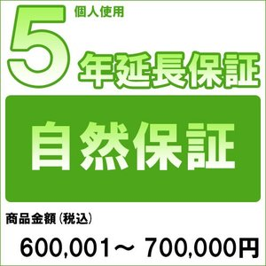 個人5年延長保証 自然故障 商品金額 税込600,001円〜700,000円用 archholesale
