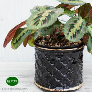 アヒージョ鍋 キャセロール鍋 土鍋 1人用カップタイプ 口径8.5cm(持手付き)チーズフォンデュ ココア スープに カスエラ 耐熱陶器 直火 オーブン可|area27