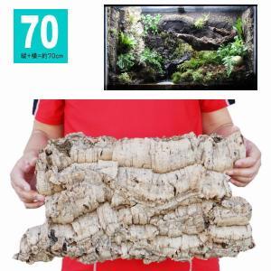 *70サイズ:縦+横=約70cm  *天然コルク樫樹皮