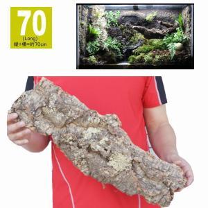 *サイズ 70ロング:縦+横=約70cm  *天然コルク樫樹皮