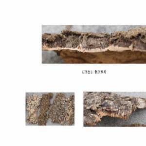 バージンコルク 70サイズロング(縦+横=約70cm)コルクシート コルクディスプレイ コルクボードコルクマット コルクタイル 天然コルク樫 樹皮 園芸 天然木|area27|05