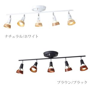 ART WORK STUDIO(アートワークスタジオ) ハイブリッドフォーチュン リモート シーリングランプ(Hybrid fortune-remote ceiling lamp)|arenot
