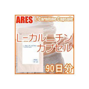 L-カルニチン (90日分)【メール便配送商品(代金引換・日時指定不可)】