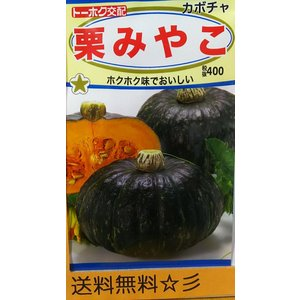栗みやこカボチャ トーホクの商品画像|ナビ