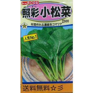 照彩 小松菜 しょうさい コマツナ 種 送料無料