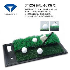 ダイヤ ツーウェイマット TR-408 [有賀園ゴルフ]|arigaen
