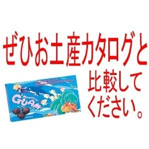 グアム お土産 土産 おみやげ グアム クランチマカダミアチョコレート 170g 通販