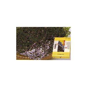 名家 大判のりギフト 5袋セット(海外 韓国 お土産 おみやげ 土産 みやげ)|arigatou-nuts