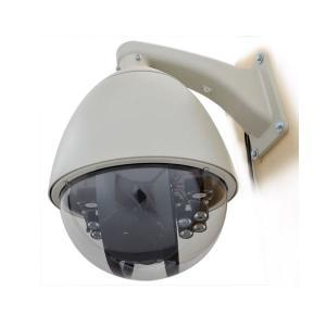 サンコー スピードドームジョイスティック付防犯カメラシステム STSPDM54 | 防犯カメラ|arinkurin2