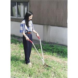 立作業用 芝生雑草刈込バサミ | 草刈り機|arinkurin2