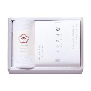こんにゃくスポンジセット B5048067(×5)|arinkurin2