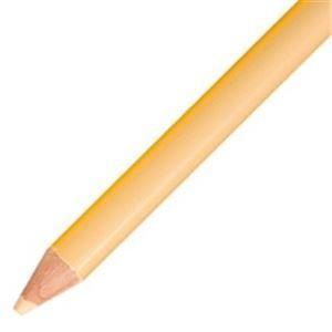 (まとめ売り×5)トンボ鉛筆 色鉛筆 単色 12本入 150029 うす橙|arinkurin