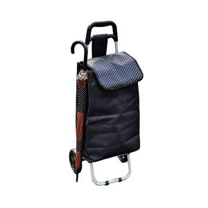 保冷・保温ショッピングカートキャリーカート (内面:保冷バッグ仕様) 軽量 傘立て用フォルダー付き|arinkurin