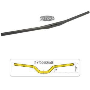 TIOGA ロングホーンカーボン20 フラットバー 750mm 31.8mm送料無料 沖縄・離島は追...