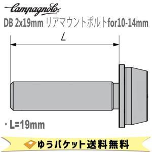 カンパニョーロ CAMPAGNOLO DB 2x19mm リアマウントボルトfor10-14mm 2本入り AC18-DBSC19 1137612 自転車 ゆうパケット発送 送料無料 aris-c
