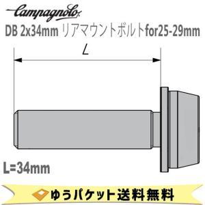 カンパニョーロ CAMPAGNOLO DB 2x34mm リアマウントボルトfor25-29mm 2本入り AC18DBSC34 1137615 自転車 ゆうパケット発送 送料無料 aris-c