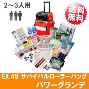 防災セット 避難袋 避難グッズ 避難セット EX.48 サバ...
