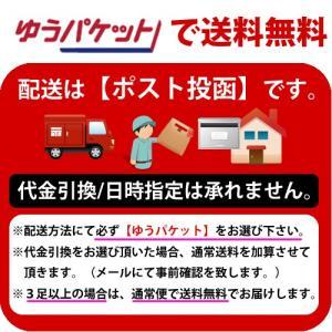 メール便OK 防犯ステッカー セキュリティーステッカー  防犯カメラ作動中 (OS-184)|arkham|04