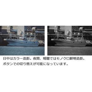ブッシュネル(Bushnell) 暗視スコープ 第二世代 相当 撮影・録画機能搭載 デジタル ナイトビジョン エクイノクスZ4R (EQUINOX Z4R)|arkham|02