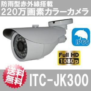 防雨型 赤外線搭載 220万画素カラーカメラ ITC-JK300  防犯カメラ 監視カメラ 夜間撮影|arkham