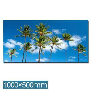 フォトパネル リゾート風 インテリア アートパネル アートフレーム フォトアート パネル フレーム IAP51319 Palm trees,hawaii